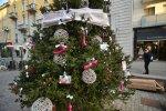 В Италии убрали украшенную фаллоимитаторами рождественскую елку