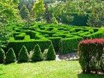 В Парме откроется гигантский зеленый лабиринт